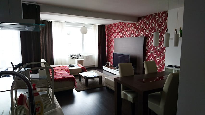 Private room for dog lovers - Brno