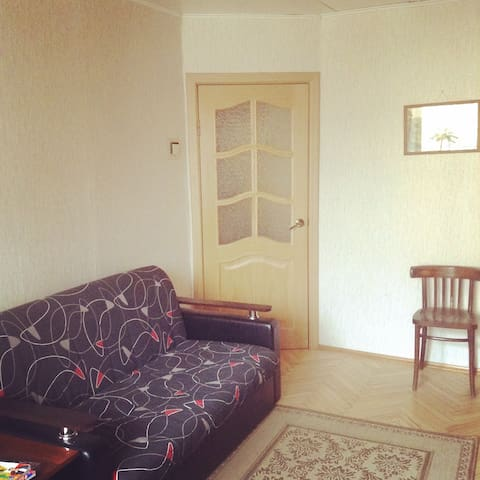 A nice living room in a two room flat - Sint-Petersburg - Appartement