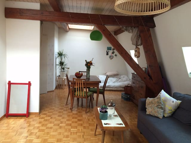 Cute loft near city centre and UN - Genève - Appartement