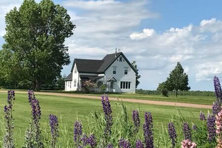 GRAMMY'S FARMHOUSE