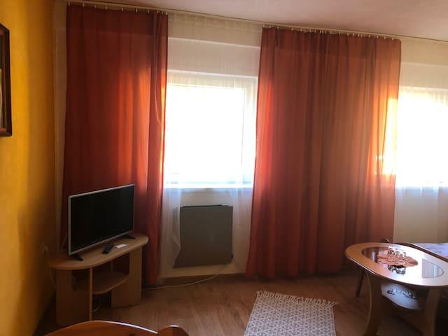 Отель Western-Penzion
