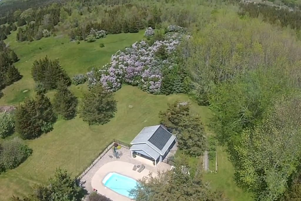 Another aerial view of the pool. The purple lilacs in the top of the photo provide a beautiful fragrance for a few weeks in the spring time.