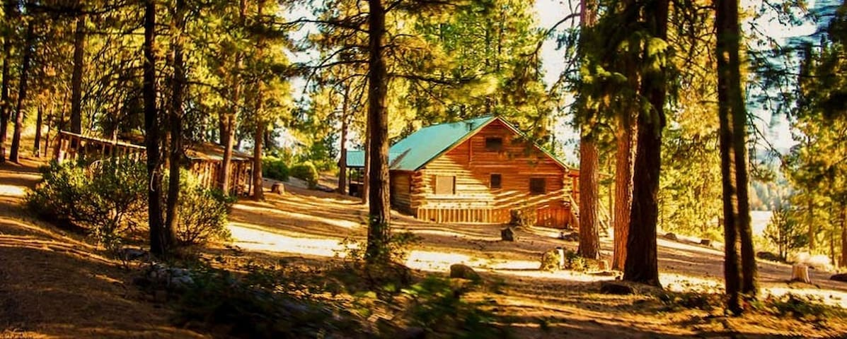 The New Frontier Ranch: Aspen Cabin