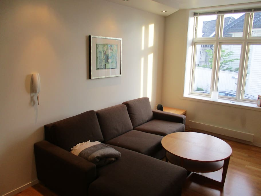 Livingroom. Comfortable couch