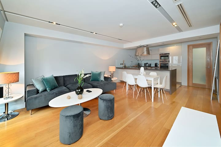 Luxurious Apartment in London near Hyde Park and Big Ben