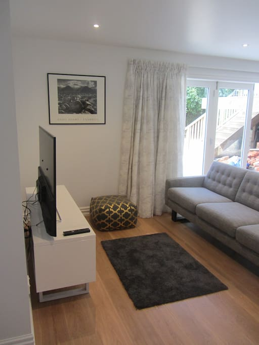 Living space, with good sized couch.