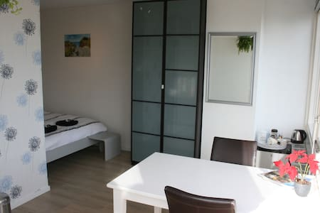 Clean private room near Keukenhof/Schiphol Airport - Lisse - 一軒家