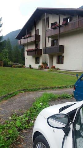 Appartamento in montagna (Dolomiti) - Falcade  - Huoneisto