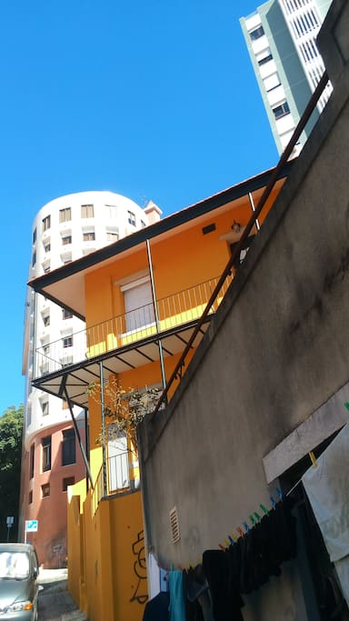 Vila Gomes ( Yellow )