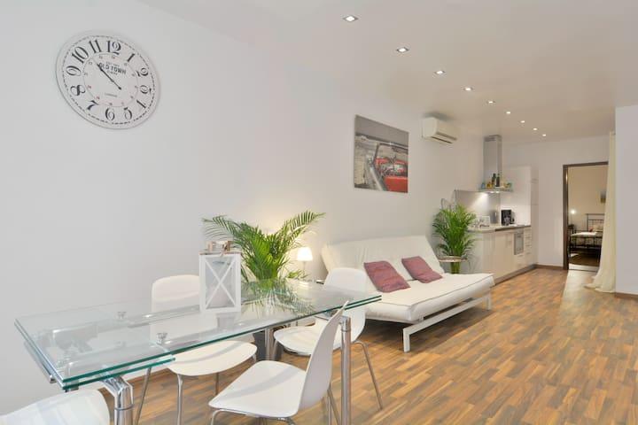 Luxury spacious apartment Old Town