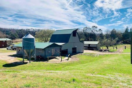 Family Farmhouse on Horse/Cattle Farm