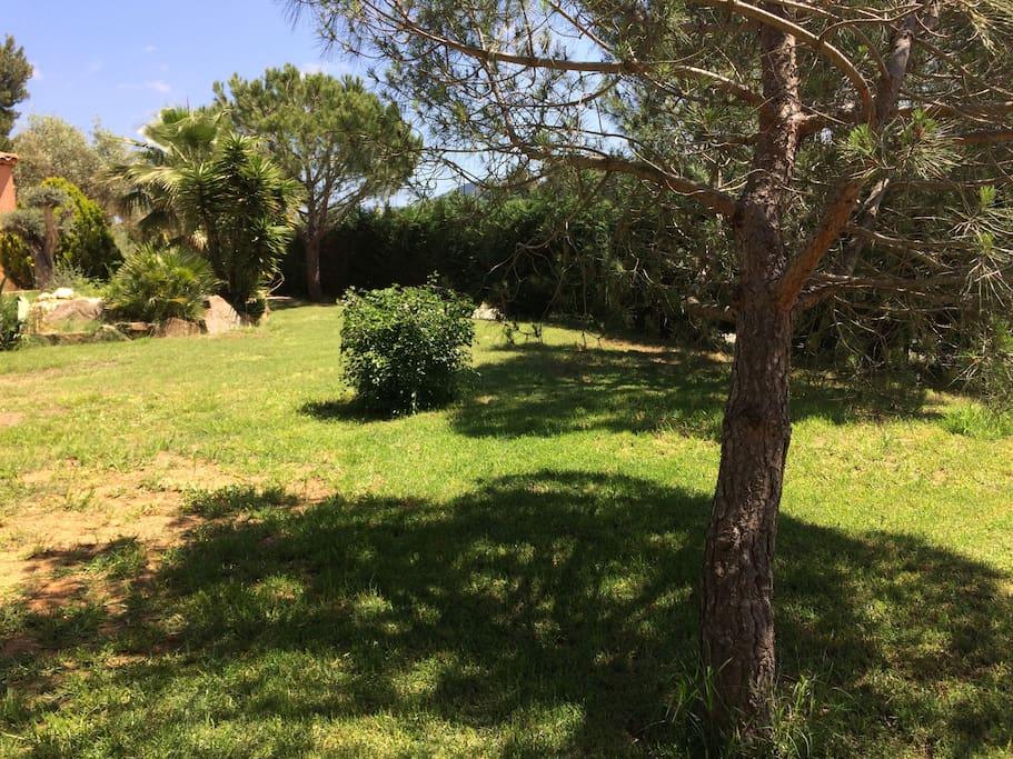 Le jardin paysagé devant le mobil-home