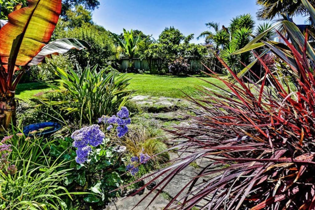 Backyard of property, looks like Hawaii!
