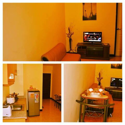 One Bedroom unit in Palmetto Residences