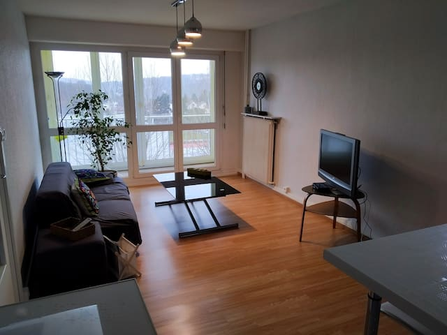 Appartement 2 chambres proche centre et Axone