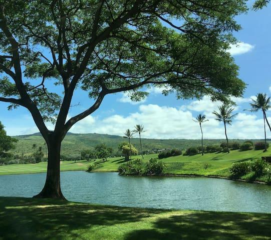 Hawaii Golf & Ocean Adventure A