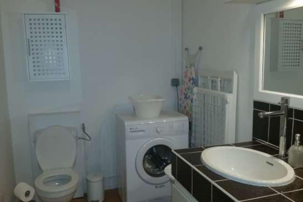 Lave linge + WC dans la salle d'eau