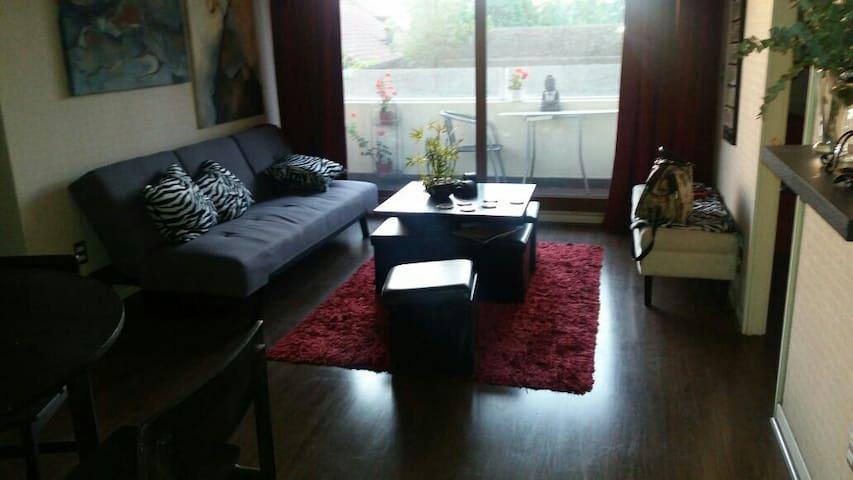 Durante junio 2017. Apartamento completo - Santiago - Apartment