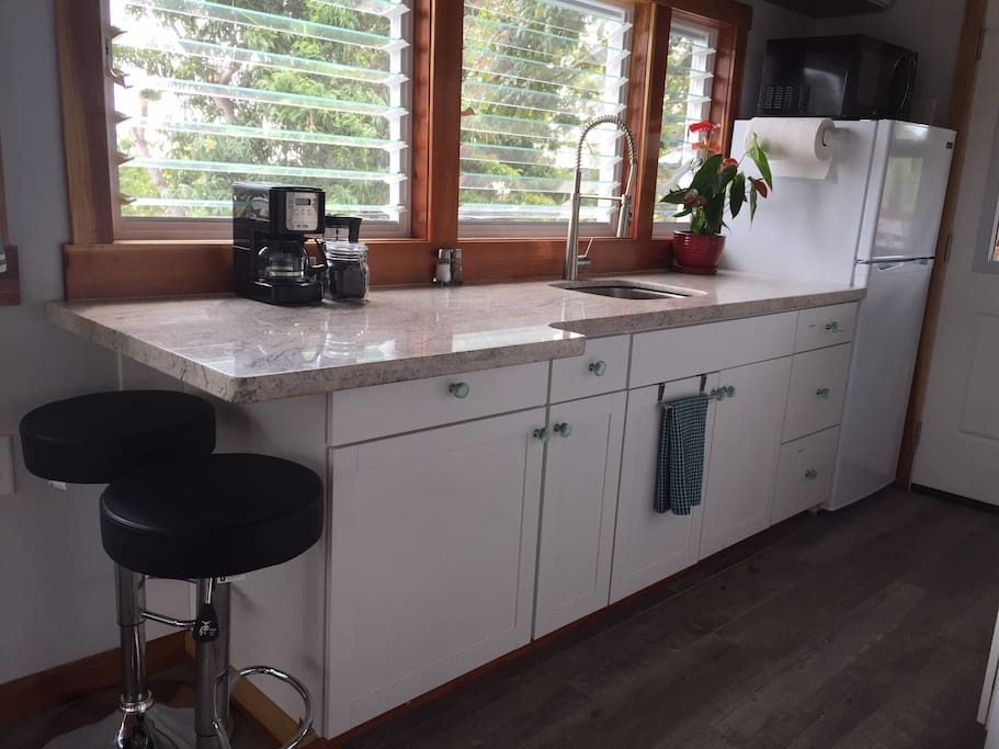 Kitchenette with full refrigerator, microwave and granite countertop