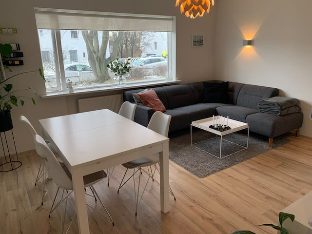 Cozy Apartment close to downtown Reykjavik