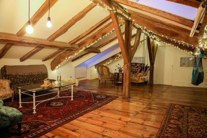 Magnifique loft charmé par le bois