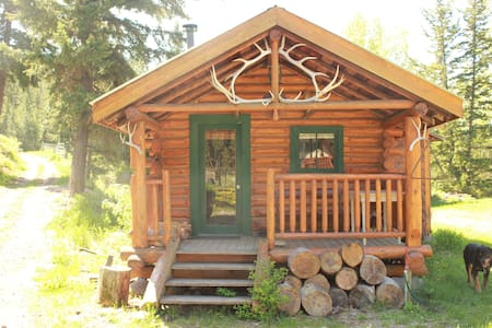 Secluded Log Cabin on remote Ranch near Loon Lake
