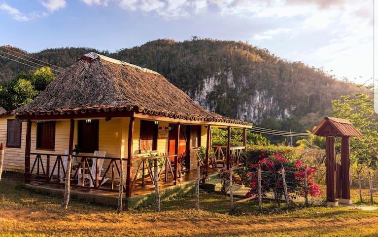 """""""Villa Las Palmitas """" en Viñales ( Casa completa)"""