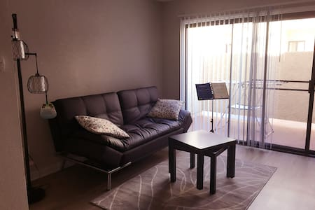 The new sofa bed in apartment - Los Angeles