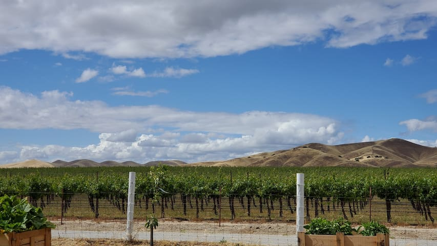 Wine Country Getaway.