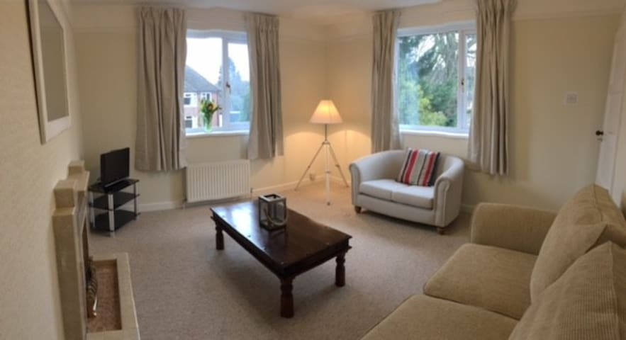 Spacious 1 bed annex in Central Newbury - Newbury - Lejlighed