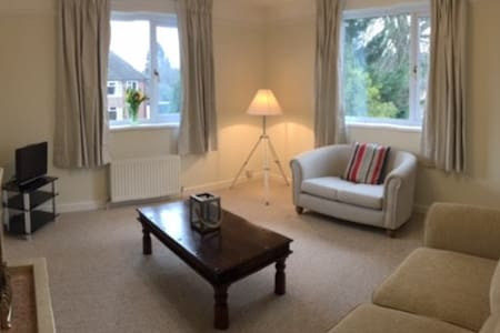 Spacious 1 bed annex in Central Newbury - Newbury - Lägenhet