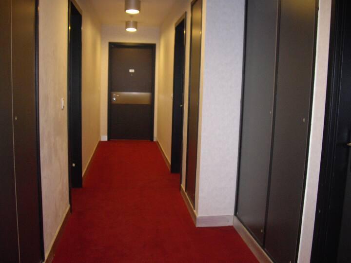 Logement lumineux à Montplaisir + Parking privé