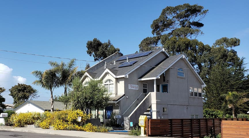 Ocean View Beach House & Studio (Pet Friendly)