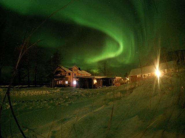 A cozy place in the heart of Norways Wilderness - Leines