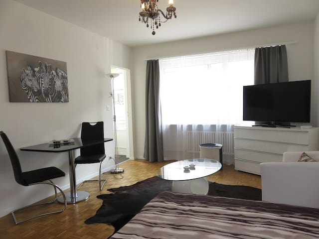 12GR - Modern 1-room apartment nearby SBB station - Basel - Leilighet