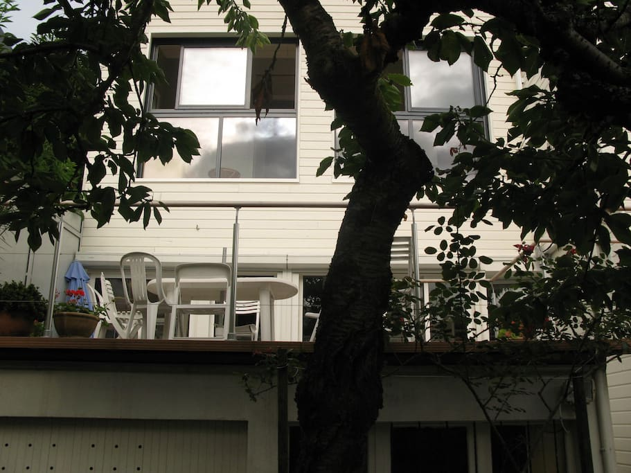 La façade sur jardin, avec la terrasse et le cerisier.