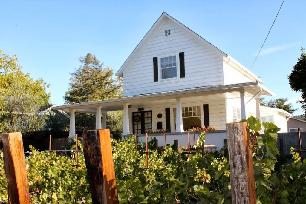 Merlot and Cab grapevines line the front of the house.