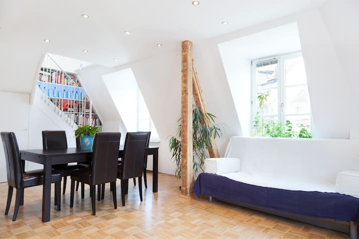 Superb apartment in Munich's center