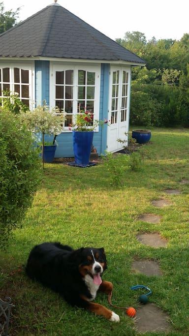 Das ist nur ein Teil des großen, gepflegten Gartens...
