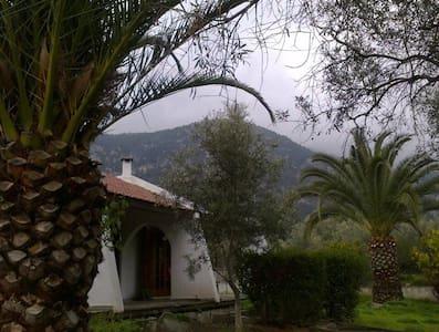 Holiday Escapade near Athens        -  Schoinos - Hus