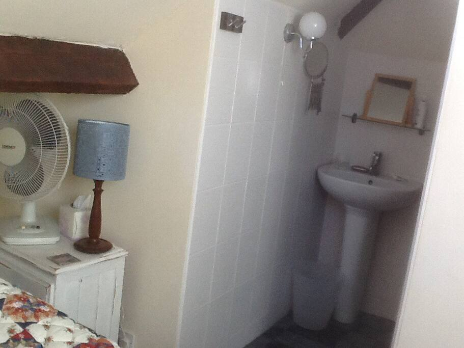 Private en suite leading from guest bedroom