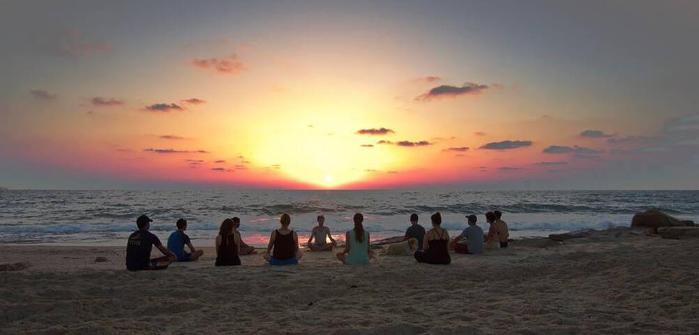 Solomons Beach Zoola