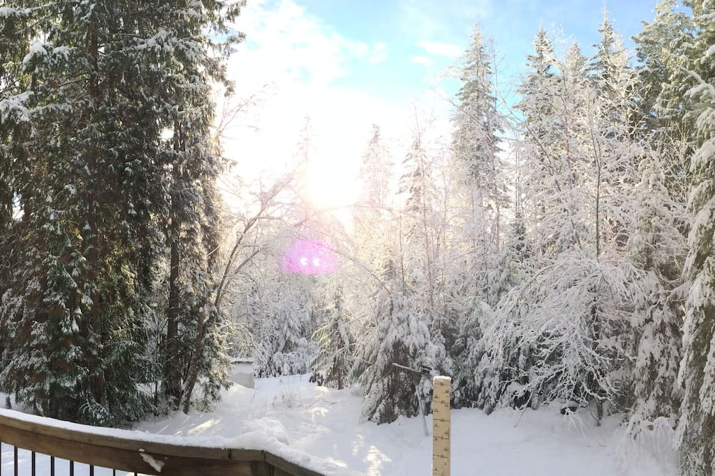 Deck in winter.