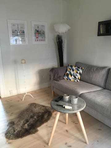 Cozy appartment in central Odense - Odense C - Reihenhaus