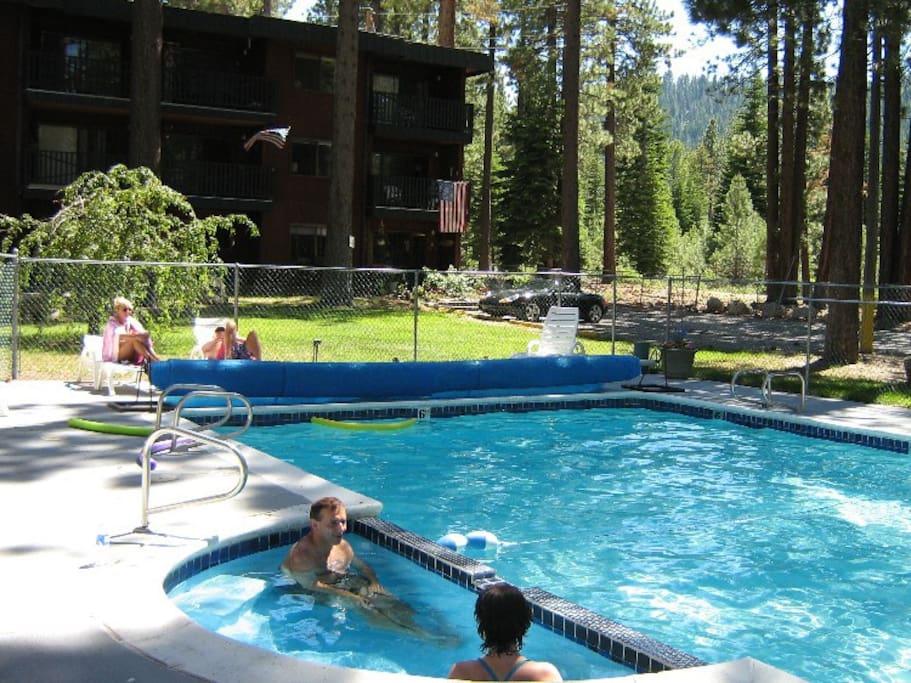 Charming tahoe mountain condo condomini in affitto a for Animali domestici della cabina del lake tahoe
