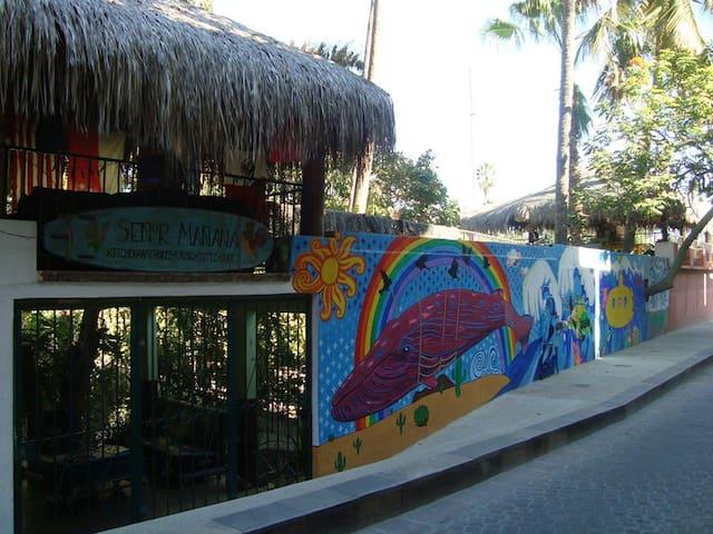 La casa del viajero ! - San José del Cabo - Bed & Breakfast