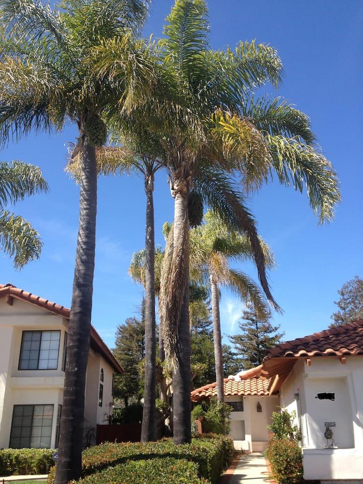 Southern California Sunshine awaits your arrival!