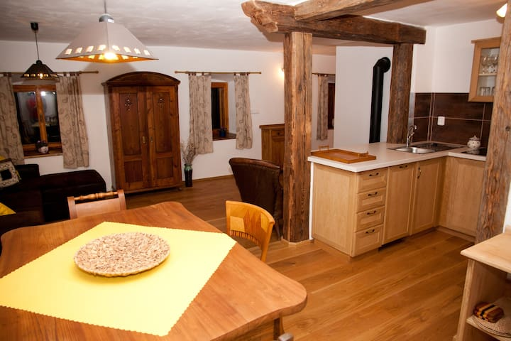 Waterwheel apartment at Stony Creek - Český Krumlov - Appartement