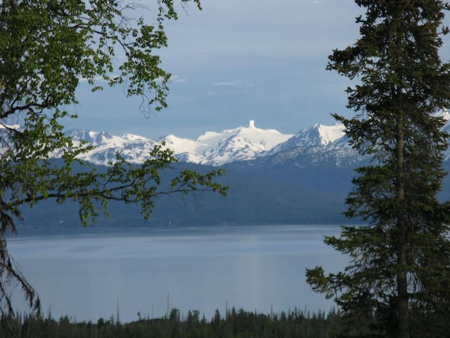Kachemak Bay View Raven's Nest