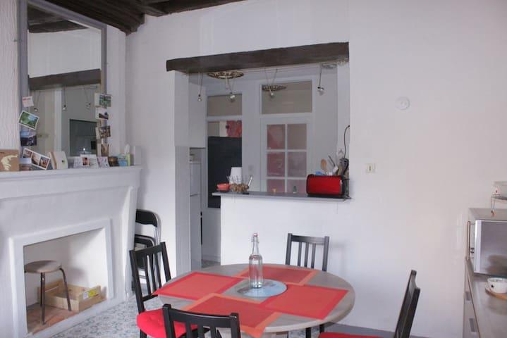 Appartement au coeur de la Doutre - Angers - Huoneisto